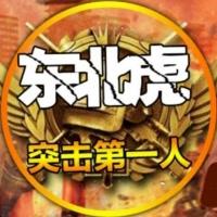 东北虎¥刺激战场